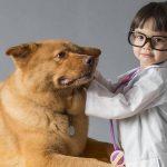 Avis mutuelle chien : assurance chien credit mutuel