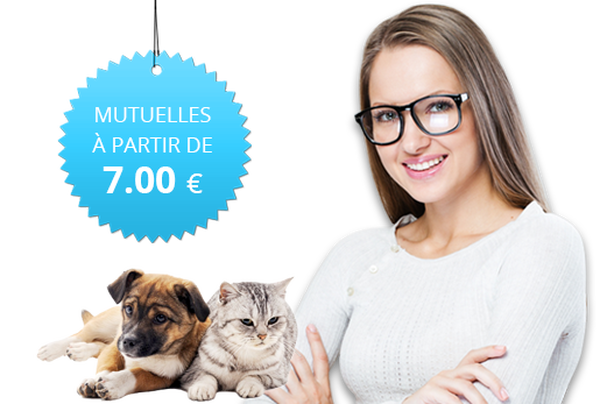 mutuelle pour chien maaf