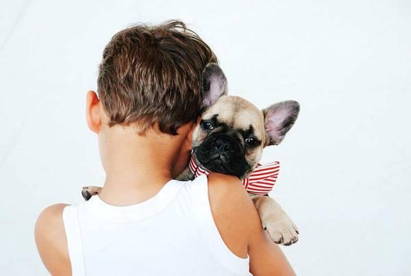 mutuelle chien pas cher