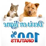 Bulle bleue mutuelle chien et comparateur mutuelle chien chat