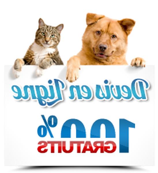 assurance chien credit mutuel