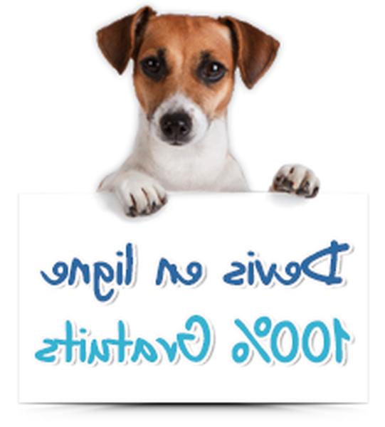 mutuelle chien 100