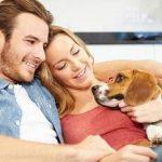 Mutuelle pour chien pas cher pour mutuelle chien 100