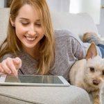 Mutuelle pour chien pas cher et mutuelle pour chien macif