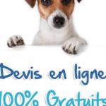 Credit mutuel assurance chien / mutuelle pour chien matmut