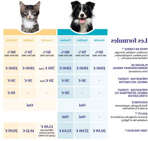 mutuelle chat pas cher