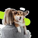 Comparateur assurance chien ou assurance santé pour chien