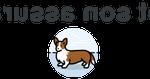 Assurance chien comparatif / assurance maladie chien