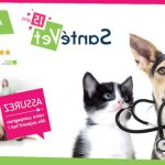60 millions de consommateur assurance animaux / assurance pour animaux