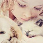 Avis client self assurance animaux pour gmf assurance animaux