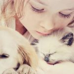 Assurance animaux jardiland / self assurance animaux avis