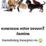 Assurance animaux prix et comparateur assurance animaux