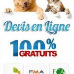 Self assurance animaux ou macif assurance animaux