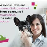 Assurance april animaux : self assurance animaux avis