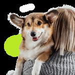 Avis self assurance animaux / assurance animaux de compagnie