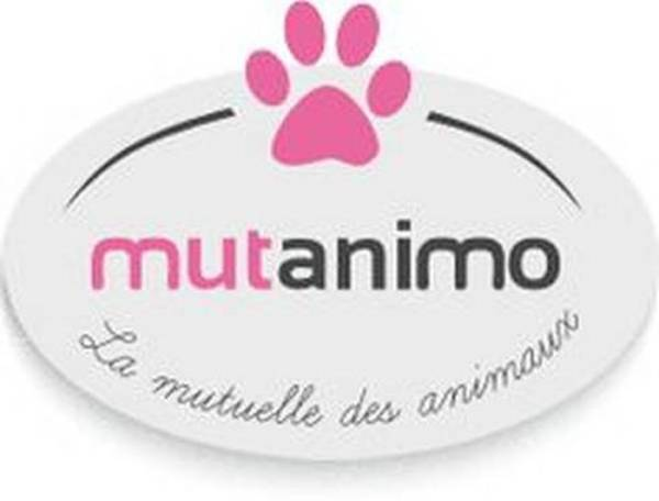 assurance animaux carrefour