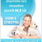 Gmf assurance animaux : assurance animaux de compagnie