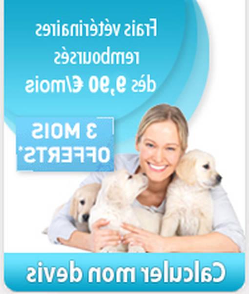 assurance april animaux